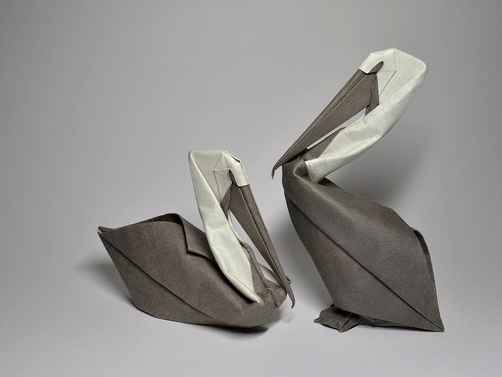ıslak-origami-pelikan
