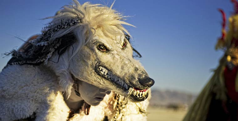 Burning Man 2014-16