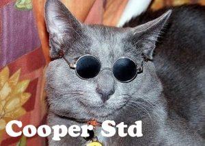 Cooper Std