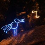 Işık Animasyonu Sihirli Orman