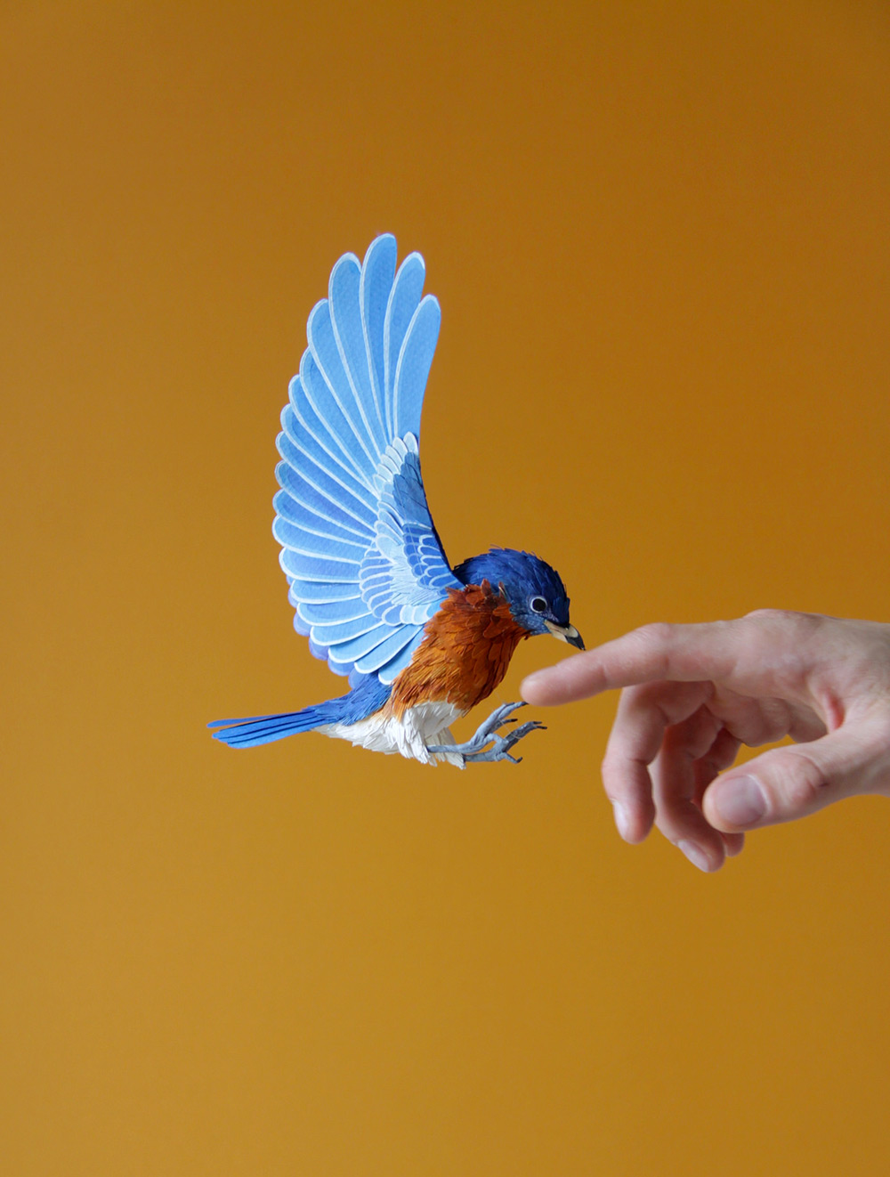 Kağıt Kuşlar-3