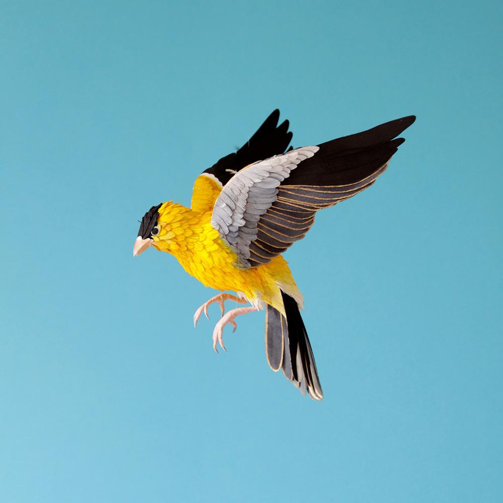 Kağıt Kuşlar-6