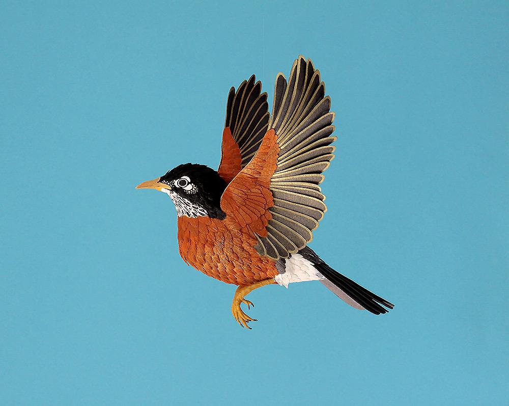 Kağıt Kuşlar-7