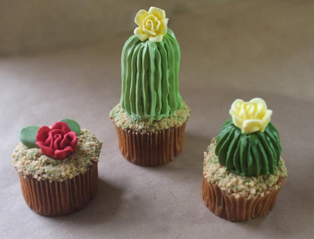 Kaktüs Cupcake-3