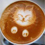 Kedi, Pati, Kahve, Sanat