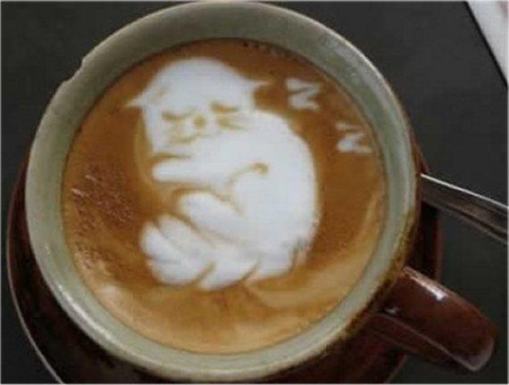 Uyuyan Kedi, Kahve, Sanat